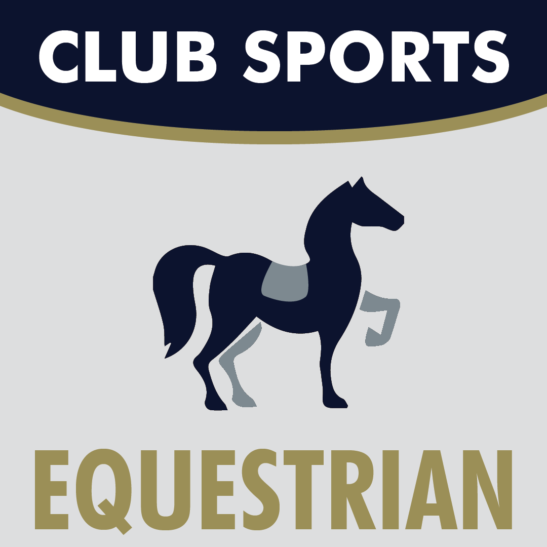 Club Sports Equestrian Icon