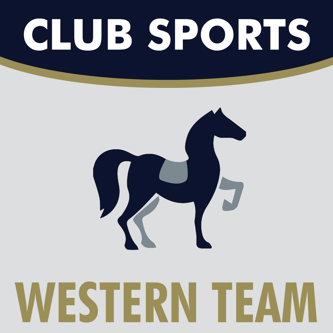Club Sports Western Team Icon